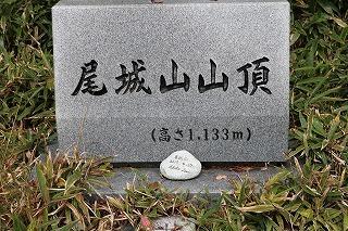301012-4.jpg